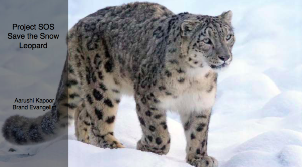 Project SOS: Save the Snow Leopard
