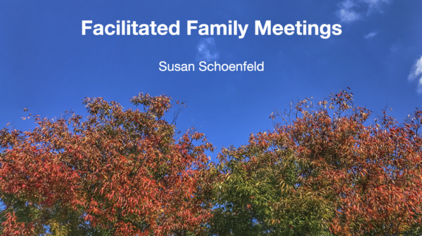 Facilitated Family Meetings