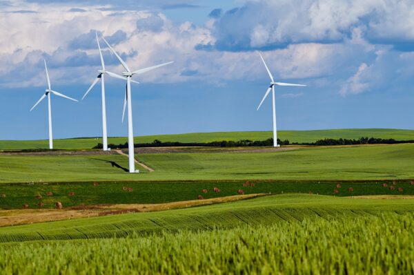 Global Renewable Energy Industry Grew in 2020 at its Fastest Rate Since 1999